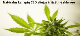 Natūralus kanapių CBD aliejus ir išsėtinė sklerozė